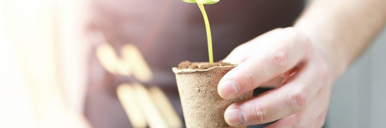 Få ditt företag att växa